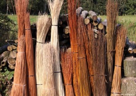 manden wilgentenen bossen bewerkt
